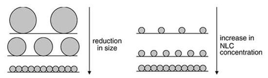 纳米传输系统-Nano Delivery System-纳米包裹-纳米技术-化妆品